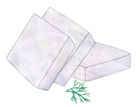 Low Fat Cheese illustration