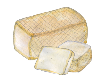 Goat's Milk Grevenon Cheese illustration