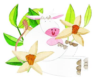 Drinkable Yogurt Vanilla illustration